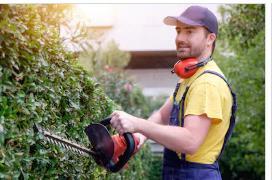 La imagen tiene un atributo ALT vacío; su nombre de archivo es jardineros-en-cartagena-a-domicilios.jpg